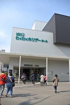 DSC_8870.JPG